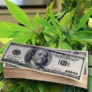 California Considers Slashing Weed Taxes to Compete with Black Market