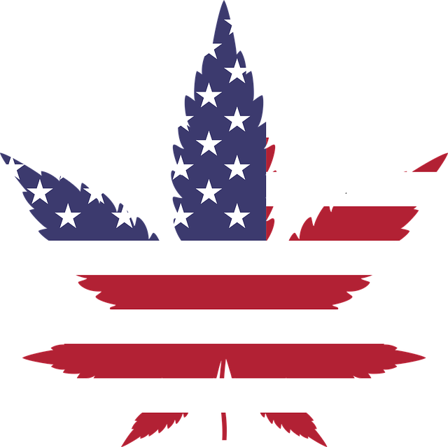 The Numbers Keep Increasing: Americans Support Legalization