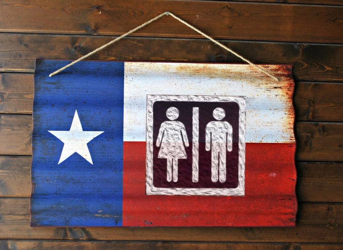 Texas and 12 Other States to Ask Judge to Halt Transgender ...