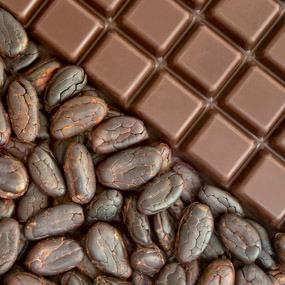 The Wonders of Raw Chocolate