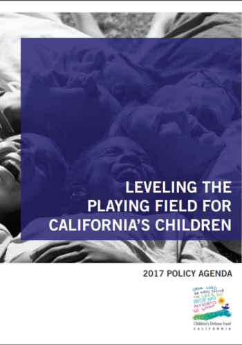 Leveling The Playing Field Cover