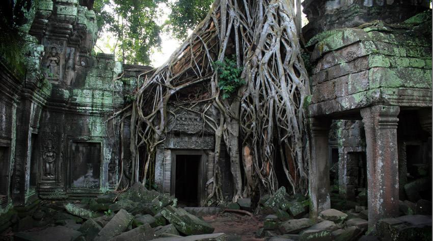 Ruin-angkor_wat_ta_prohm
