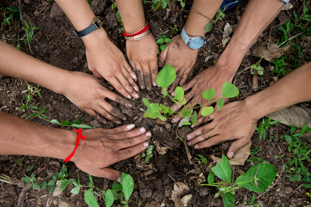 Tree Planting Cambodia 2014 Luc Forsyth-50