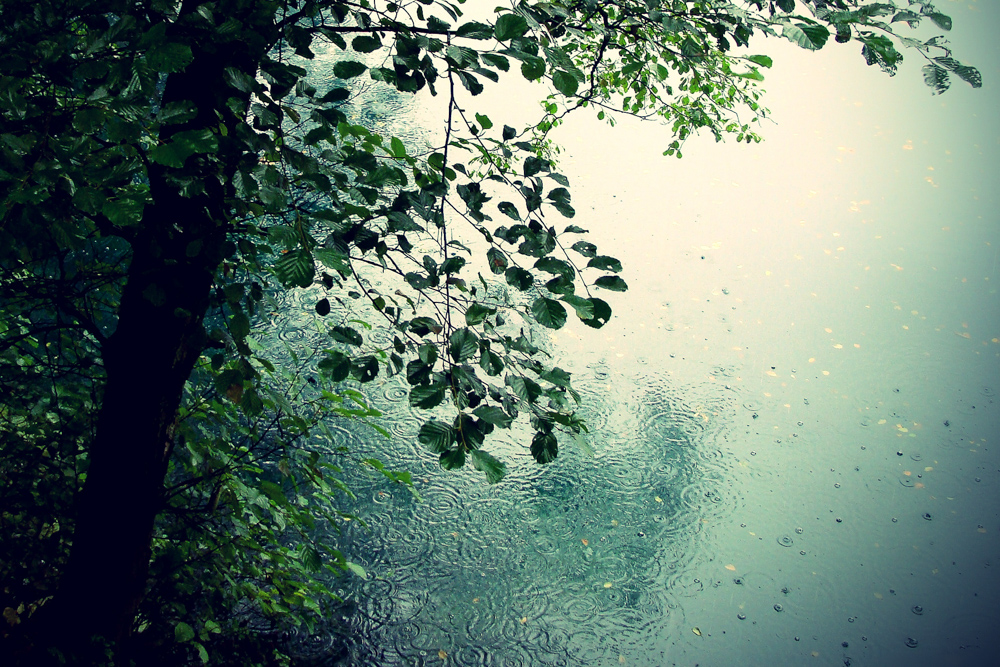 5 Perks Of Going Outside In Crummy Weather Tentree