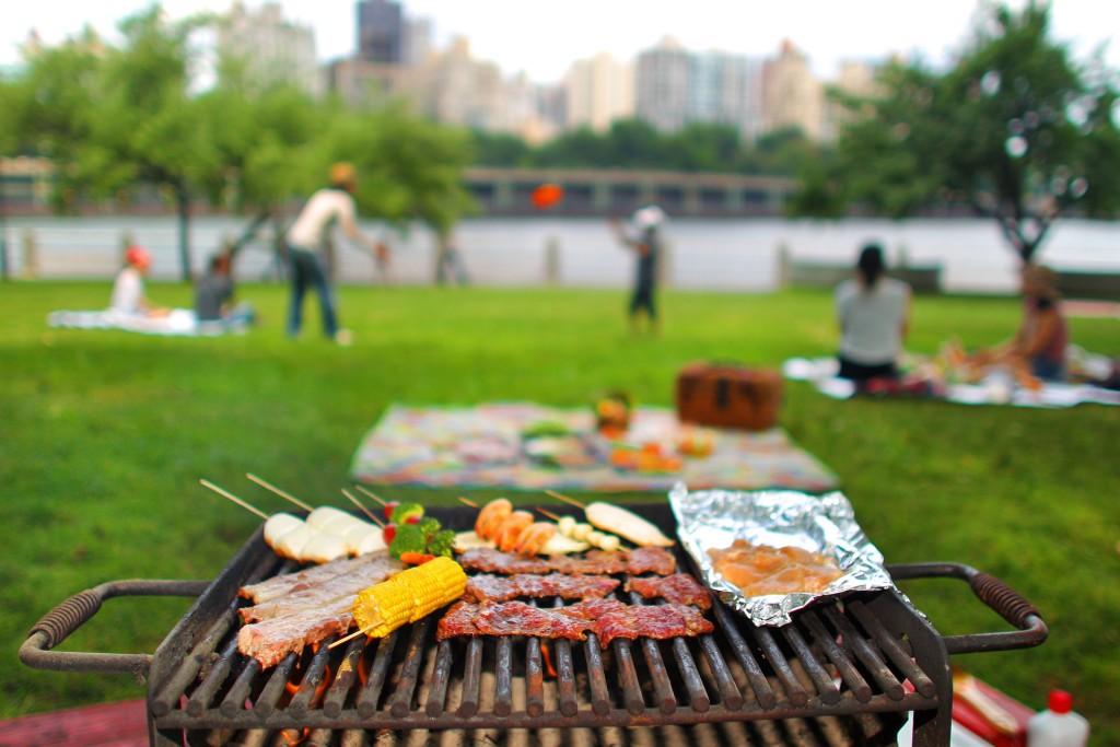 picnic_scene