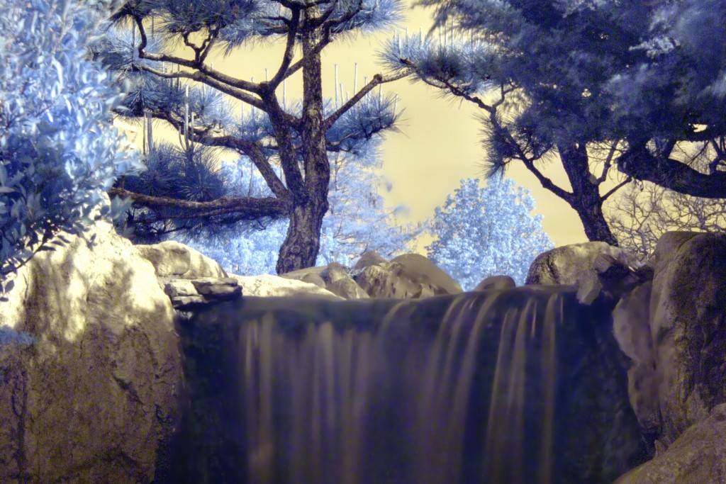Japanese_trees_and_waterfall_-_Infrared