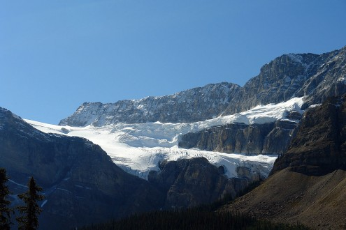 Crowfoot_Glacier_1
