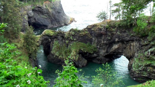 natural bridges cove boardman state park Oregon