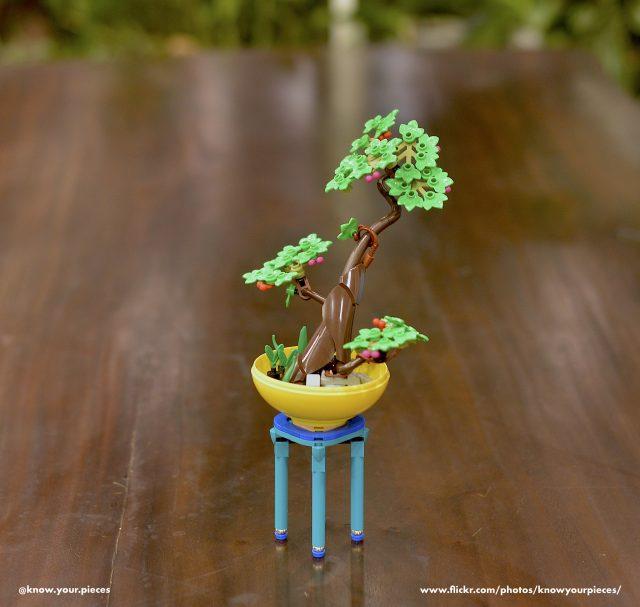 A LEGO bonsai to admire