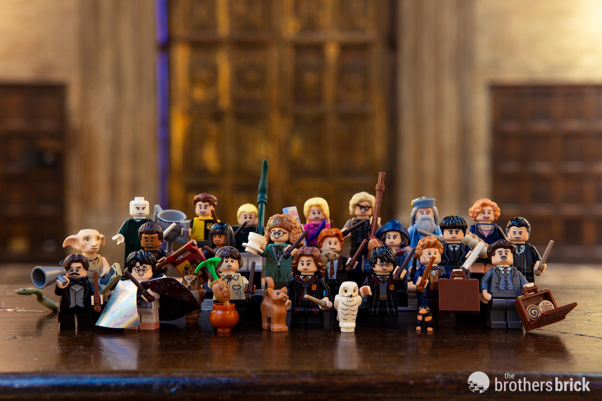 Lego 71022 Wizarding World Of Harry Potter Minifigure