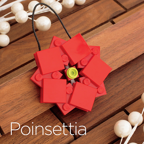 Pointsettia