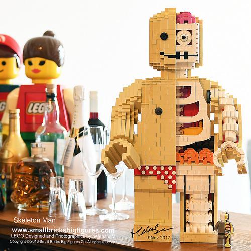 50cm Skeleton Man