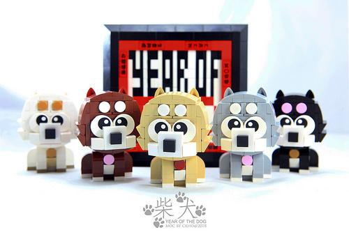 YEAR OF THE DOG (SHIBA)