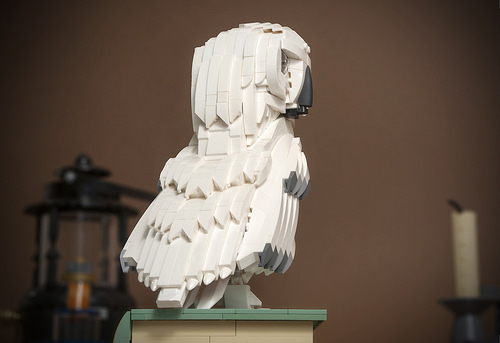 Hedwig the snowy owl