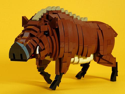 wild_boar_04
