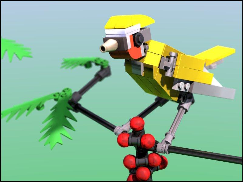 Andreas Weissenburg's Bird