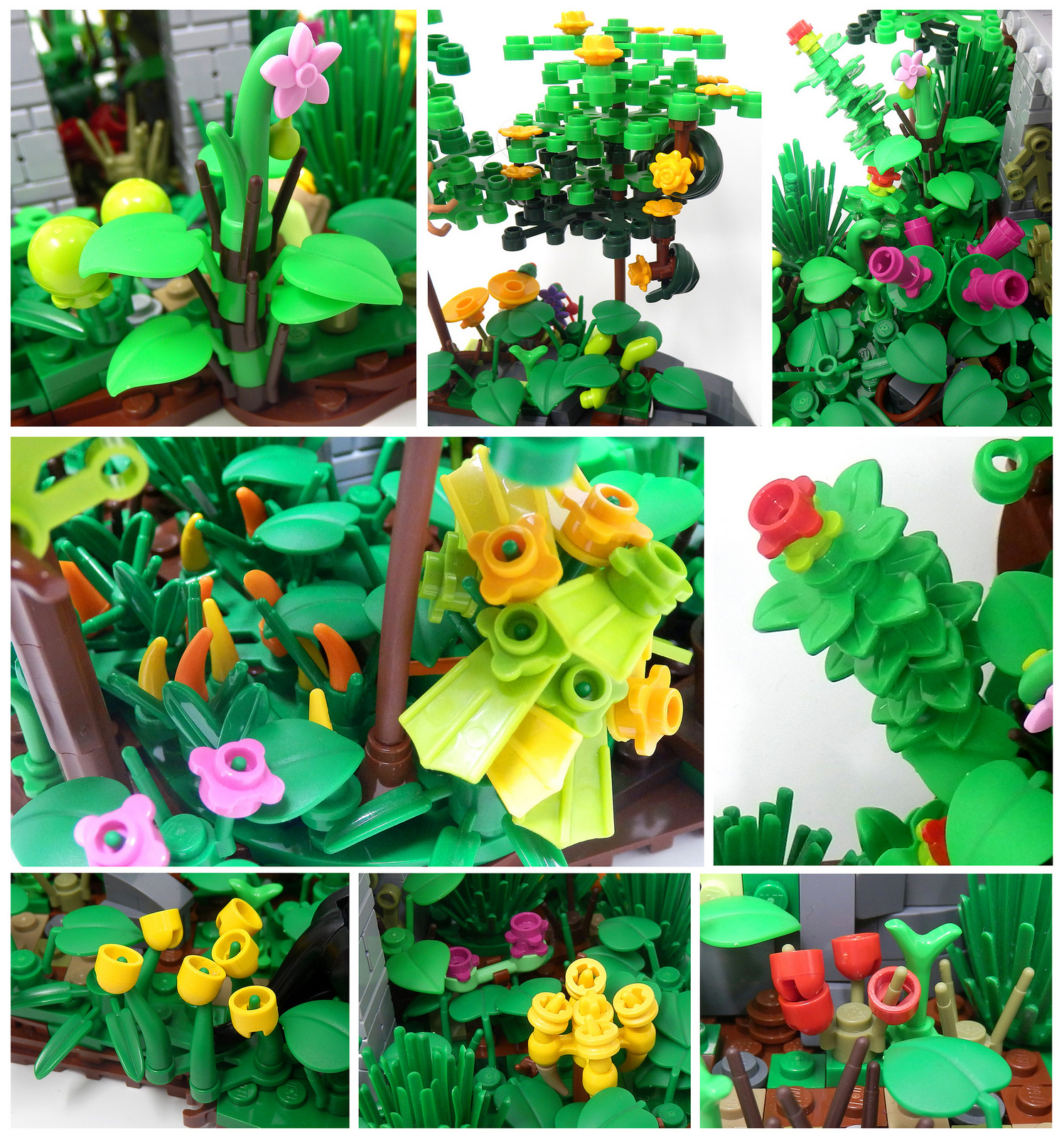 Plant Creations