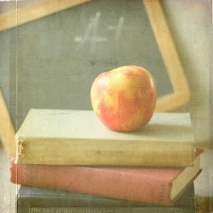 libros de escuela