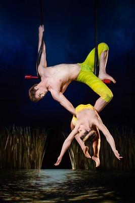 fixed-trapeze-duo-2-small
