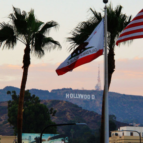 hwood-sign-flag