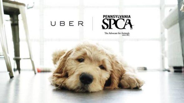 Foto: Campaña promocional de Uber.