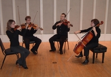 String quartet 363 250