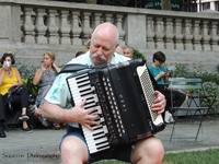 Mark accordions around the world whole
