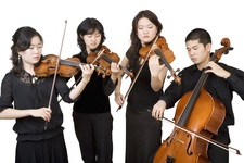 The style strings group
