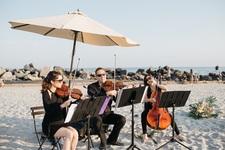 Classical string trio ocdamia music group