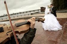 Violin stock  pic