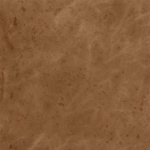 Image of Aged Caramel Leather