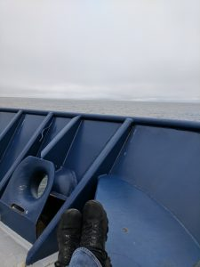 Overcast skies and calm seas viewed off the bow of the R/V Roger Revelle. Credit: Z. Cooper, University of Washington.