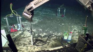 The intake for an Osmo fluid sampler is installed during VISIONS'17. Very small diameter tubing is filled with fresh water; seep fluids are drawn into the tubing osmotically. The fluids will later be analyzed onshore to examine the evolving chemistry of methane seeps. Credit:UW/OOI-NSF/WHOI; V17.