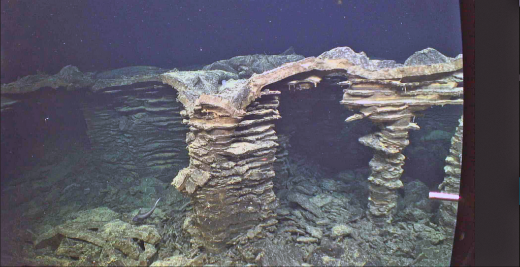 "Columns in a collapsed area that once hosted a lava lake are reminiscent of an ancient city. ""Bathtub"" rings mark lowering of the lake as lava drained out. Fossilized drips of lava are preserved hanging from the ceiling. A rattail fish explores the site. This is part of the 2011 eruption at Axial. Credit: UW/OO-NSF/WHOI; J2-980; V17."