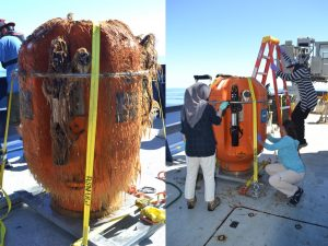 This science pod was cut loose from the Axial Base Shallow Profiler mooring on Sunday morning and was throughly cleaned by an eager group of students. The growth visible on the pod comes after just one year in the water, and since many of the instruments on the pod require unobstructed intake lines for sampling, the pods must be replaced yearly.