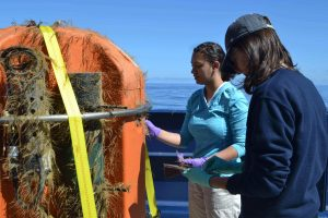 Eve Hudson and Kelsy Cain help clean the Science Pod recovered from Axial Seamount after a 1-year deployment. Credit: M. Elend, University of Washington, V17.