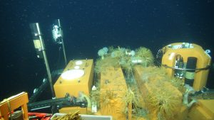 A close up of the cabled Shallow Profiler Mooring at the Oregon Offshore site showing the Platform Interface Assembly (left) and the top of the winched Shallow Profiler Science Pod (right). The platform inbetween was installed in 2014 and is now heavily colonized by animals. Credit: UW/OOI-NSF/WHOI.