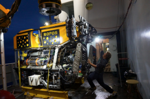Jesse getting attacked by ROPOS (Remotely Operated Platform for Ocean Science).