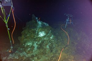 A digital still camera, mass spectrometer, and fluid and microbial DNA sampler installed at the El Gordo hydrothermal chimney, International District Hydrothermal Field, Axial Seamount. A small, 1-day old chimlet sprouts from the 280°C, gas-rich vent called Dive in the International District Hydrothermal Field. NSF-OOI/UW/ISS; Dive R1839; V15.