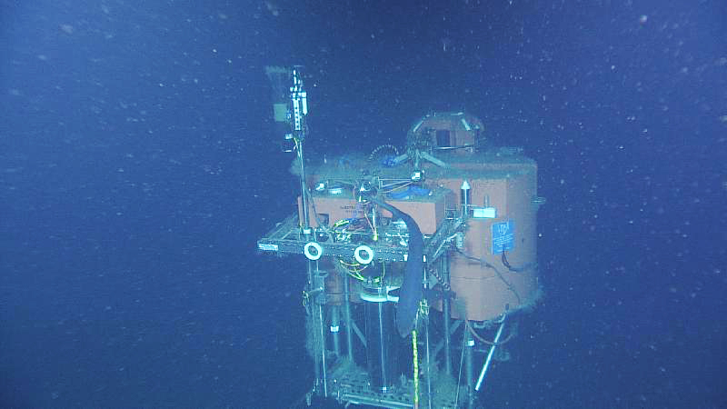 A small shark swims past the mooring platform at the base of Axial Seamout - the platorm is ~ 600 ft beneath the ocean's surface. Credit: NSF-OOI/UW/ISS; V15.