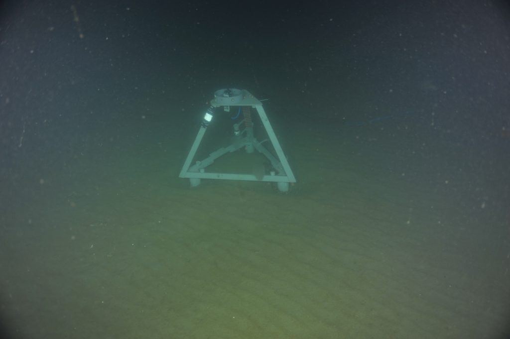 The hydrophone (an underwater microphone) connected to the Benthic Experiment Package (BEP) at the Oregon Shelf site, in 80 meters of water.  	Photo Credit: NSF/UW/CSSF, Dive R1801, V14