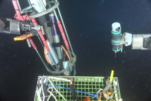 The sonar beacon being removed from the Endurance Oregon Offshore Shallow Profiler 2-legged mooring junction box, post-deployment.  Photo Credit: NSF-OOI/UW/CSSF, Dive R1752, V14