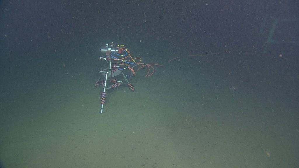 The digital stil camera deployed at Endurance Oregon Offshore site (600 m). Unlike the cameras placed at Axial Volcano, the camera at Endurance Offshore is designed to look at the seafloor in general, observing animal activity, sediment transport, detritus falls, and bioturbation.  Photo Credit: NSF-OOI/UW/CSSF, Dive 1747, V14