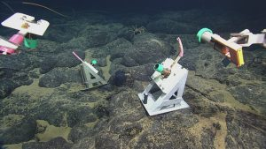 ROPOS collecting the dummy plugs and parking brakes from plugging infrastructure into primary node PN3B at Axial Caldera. A spider crab can be seen in the background.  Photo Credit: NSF-OOI/UW/CSSF, Dive 1741, V14