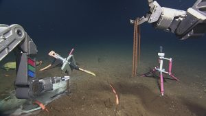 """ROPOS uses rebar """"staples"""" to secure the hydrophone cable into the seafloor at the Axial Base site. The hydrophone is mounted on the pink tripod on the right side of the frame.  Photo Credit: NSF-OOI/UW/CSSF, Dive 1739, V14"""