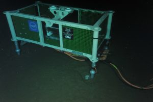 Low Voltage node LV01A on the seafloor at Slope Base, as surveyed by ROPOS.  	Photo Credit: NSF-OOI/UW/CSSF; Dive 1734; V14.