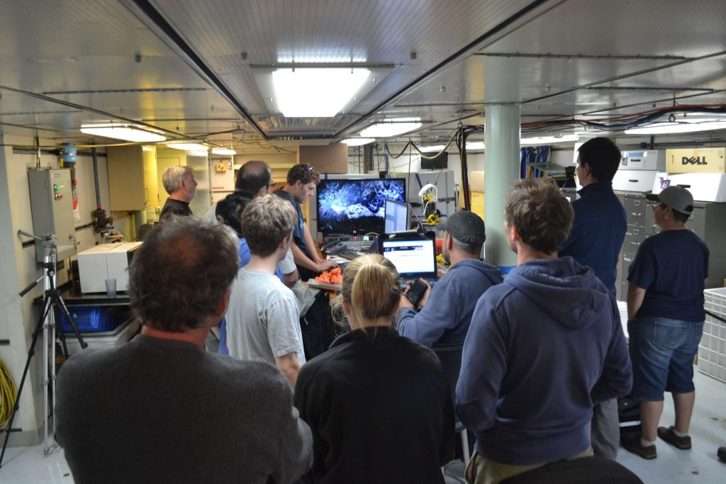 During the evening of July 28th, the Main Lab of the R/V Thompson was filled with the Science and ROV Teams watching the live test of the HD video camera at the ASHES vent on Axial Seamount. The camera had not been turned on for 1 year. The test was a resounding success. Photo Credit: Mitch Elend, University of Washington; V14.