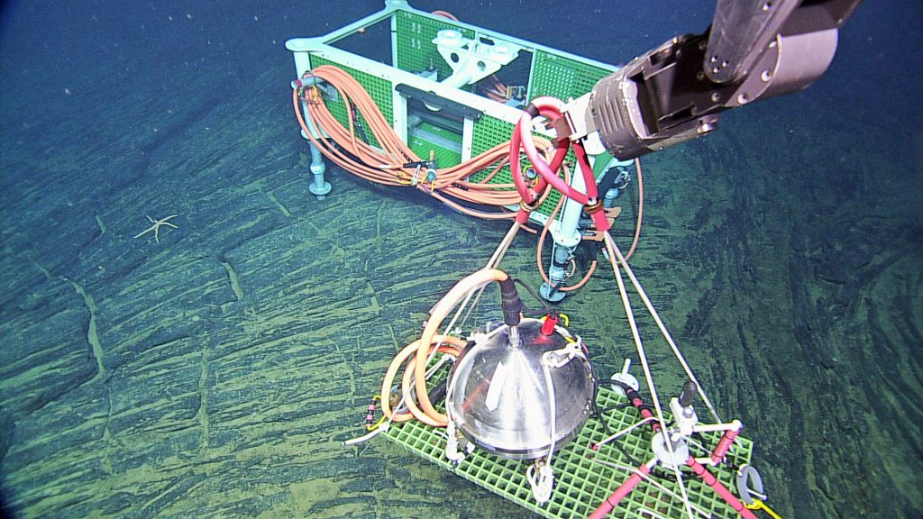 A broadband seismometer and a low-frequency hydrophone are being placed on a flat basaltic plateau at the Axial Seamount Central Caldera Site, awaiting connection to medium power J-Box MJ03F. On a follow-on dive a 4.6-km cable will be installed. This area is of particular interest because the caldera floor is rapidly being uplifted, suggesting that melt is migrating into the magma chamber below. Photo credit: NSF-OOI/UW/CSSF; Dive R1725; V14.