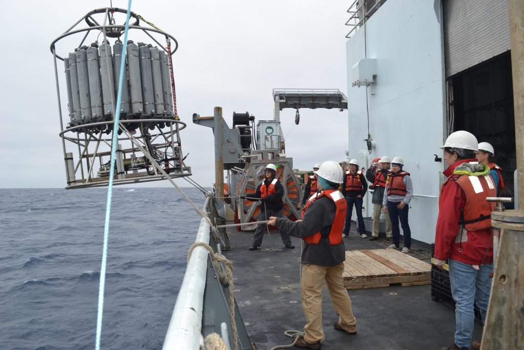 The Conductivity, Temperature and Depth (CTD) probe lies within a large carousel of Niskin water bottles.  The carousel is lowered to the seafloor while the CTD makes measurements.  On the 'ride' up, a person on deck triggers the water bottles to close (one at a time) to collect a water sample at different depths.  Photo credit: Mitch Elend, University of Washinton, V14.