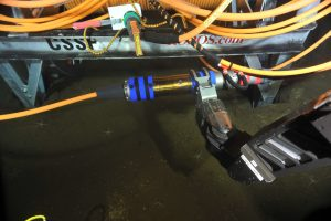 A cable termination assembly (CTA) is removed from the cable drum that was just released from the Remotely Operated Cable Laying System (ROCLS) during the ROV ROPOS dive 1599. The CTA, held in ROPOS's manipulator, provides a termination/connection between wetmate connectors and extension cables. An RSN wetmate hybrid connector (RS03W3-PA) is shown in the background, still attached to an extension cable that is figure 8'ed on the front horns of the cable drum.  Photo credit: NSF-OOI/UW/CSSF.